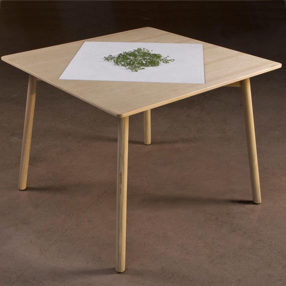 Tisch 1 web square